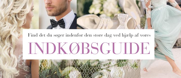 innkjøpsguide_DK